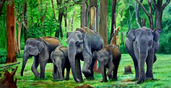 Elephants herd