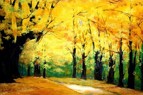 A walk through the Maple trees